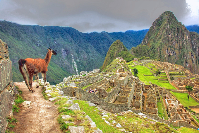 Machu Pichu - Perou - JD Edwards