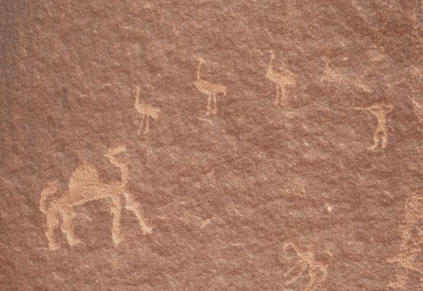 Jordanie - Wadi Rum - Petroglyphes