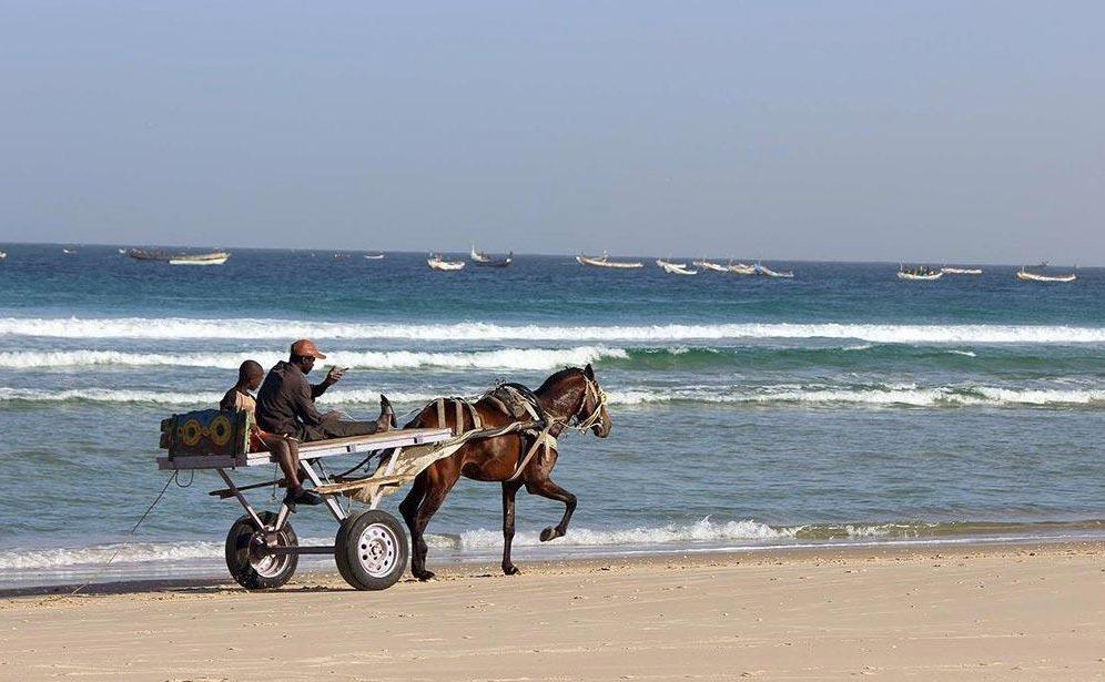 Cicruit Sénégal 2019 - calèche sur la plage